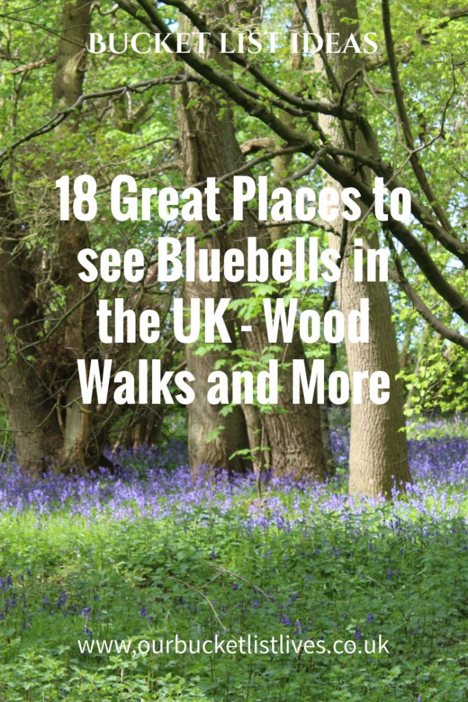 18 Great Places to see Bluebells in the UK - Wood walks and more. Bucket list, family day out