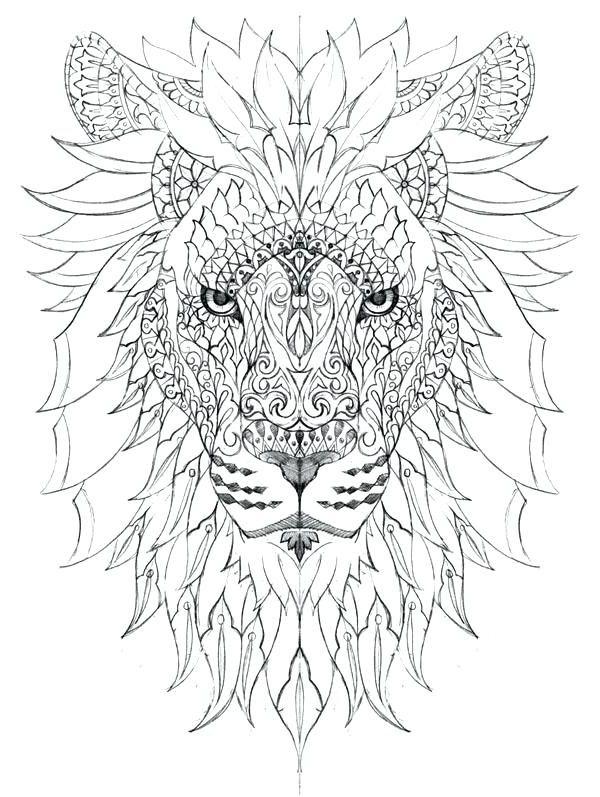 12 Quoet Coloriage Lionceau Photograph   Coloriage animaux ...