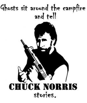 Ghosts Sit Around the Fire... is listed (or ranked) 16 on the list The 50 Funniest Chuck Norris Jokes of All Time