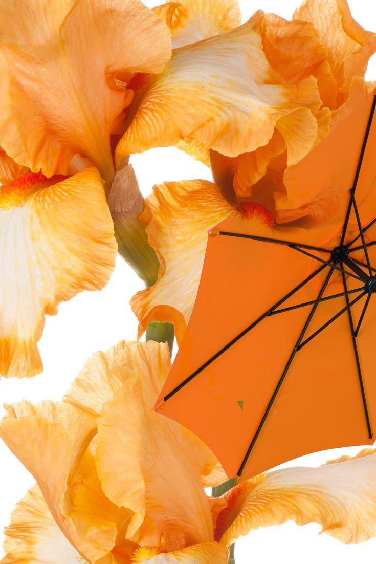 25+ Best Ideas About Sonnenschirm Für Balkon On Pinterest ... Sonnenschirm Balkon Terrasse