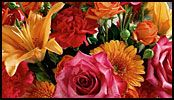 Don't forget Administrative Assistant's day! April 21st - 27th! Order today! http://www.rickeyheromans.com/index.php?cPath=24=3a_all=1
