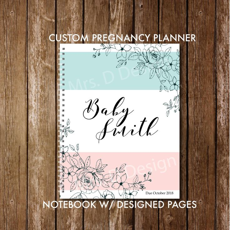 Custom Pregnancy Journal with pre-made plans + journal layout, Pink and Blue Bab… – Baby Things