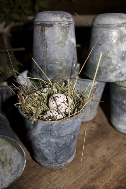 nest in a french zinc pot