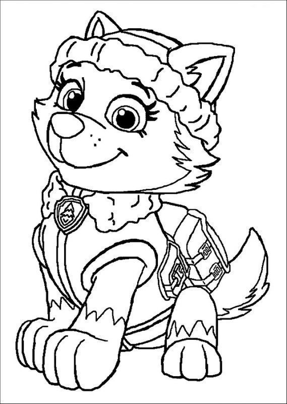 Patrulla Canina Colorear Everest Paw Patrol Coloring Pages Dog
