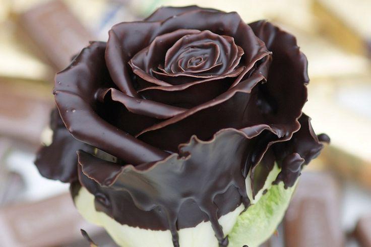 Dame Blanche rozen http://www.regioboeket.nl/vip-roses/product/chocolade/dame-blanche
