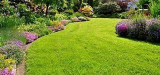 Leovan Design #lawn and #garden #maintenance #tips