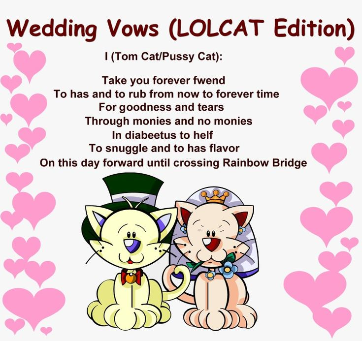 1000 Ideas About Funny Wedding Vows On Pinterest