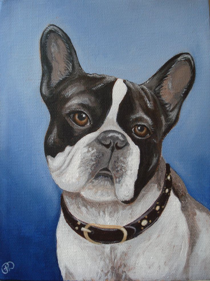 "SOLD ""Terry"" 6"" x 8"", painted in honor of a sweet little dog in our community who was publicly beaten by his owner. Painted by Pauline Dueck #dogportraits"