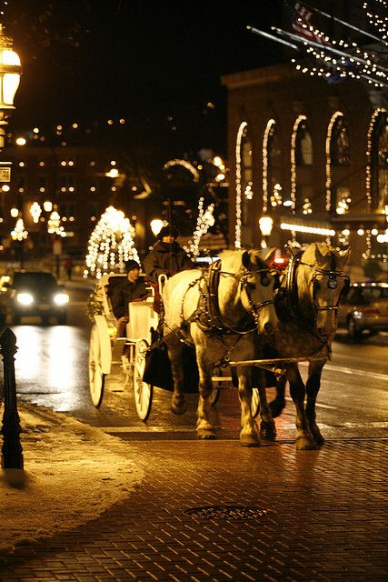 Dear Future Husband, I will fall in love with you right away if we take a night carriage ride.  - JEH