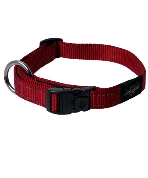 ROGZ UTILITY DOG COLLAR - RED. Available from www.nuzzle.co.za