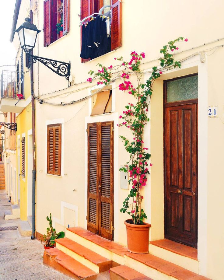 Nature has the power to decore any detail of our life . . Here I was in the island La Maddalena . . #flowers #love #lamaddalena #isoladellamaddalena #sardegna . #sardegnagram #sardegna_super_pics #lanuovasardegna #focussardegna#yallerssardegna #sardegnaofficial #volgosardegna #sardiniaworld #sardinialand #sardinia #summer #summer2017 #sealovers #house #facade #architecture #door #window #citylife #colourofsummer #yallersitalia #ig_worldclub #instagramitalia #volgoitalia