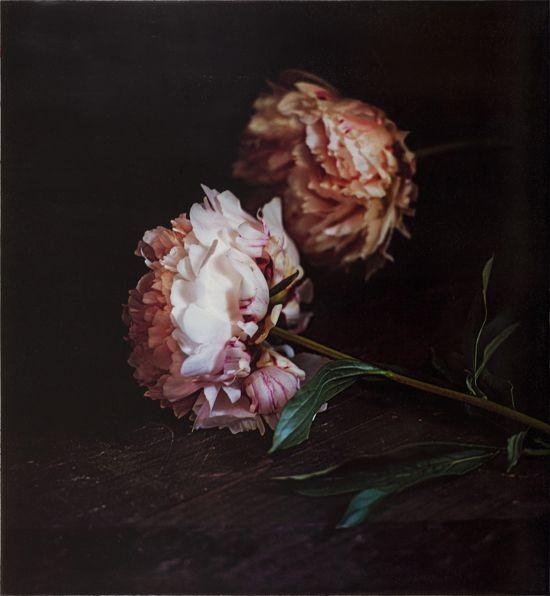 """Ontdek meer over Craigie Horsfield: """"Made in Spain: Nature Morte Photo Works by Craigie Horsfield"""". Tentoonstelling 30 okt 2016 t/m 5 feb 2017 te zien in Centraal Museum Utrecht."""