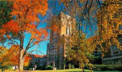 THE University of Tennessee tennessee