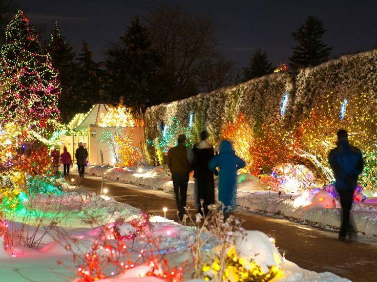 denver botanic gardens blossoms of light rh - Best Christmas Lights Denver