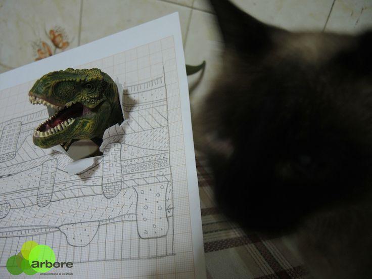 Rex vs Cat