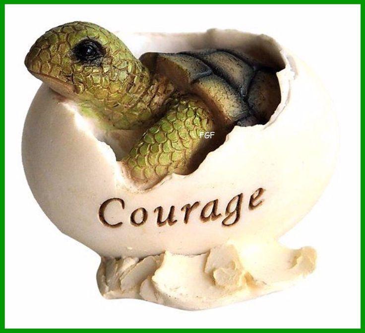 Turtle Hatching Courage TC4228
