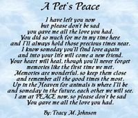 Pet Loss, How to Cope, helping children cope with the loss of a pet, grieving from loss of a pet.