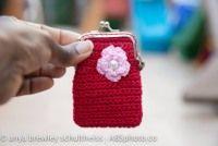 Credit card clasp purse
