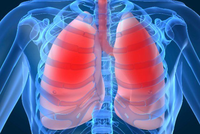 10 Herbs And Plants That Boost Lung Health