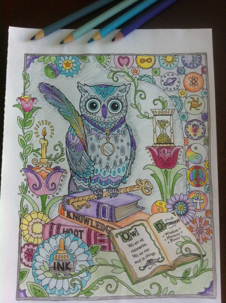 creative haven owls coloring book adult coloring creative coloring book by lady bug - Books To Color