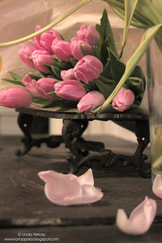 pink spring tulips at  romppala.blogspot.fi