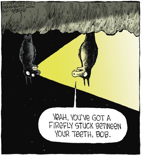Speed Bump by Dave Coverly for Jan 21, 2017   Read Comic Strips at GoComics.com