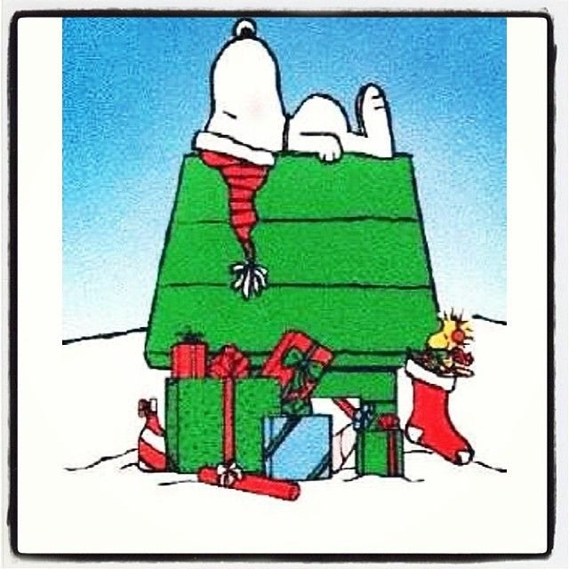 SNOOPY ON HOUSE-CHRISTMAS