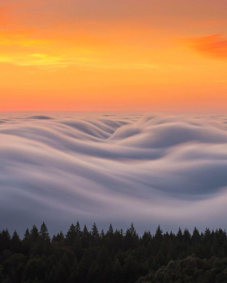As oníricas ondas de nevoeiro registradas pelo fotógrafo Nick Steinberg 10