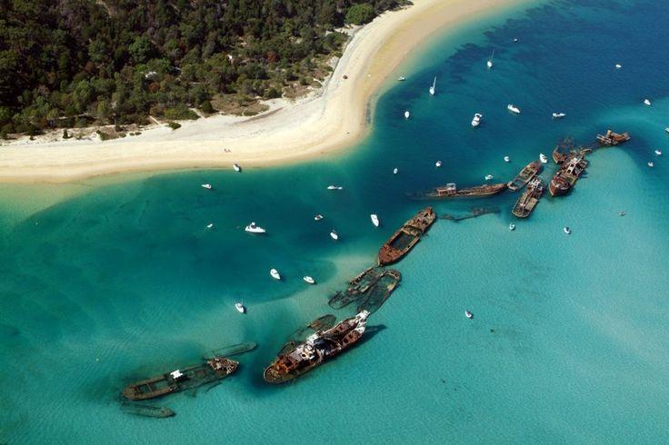 I want to go back here one day!  Tangalooma Island-Australia