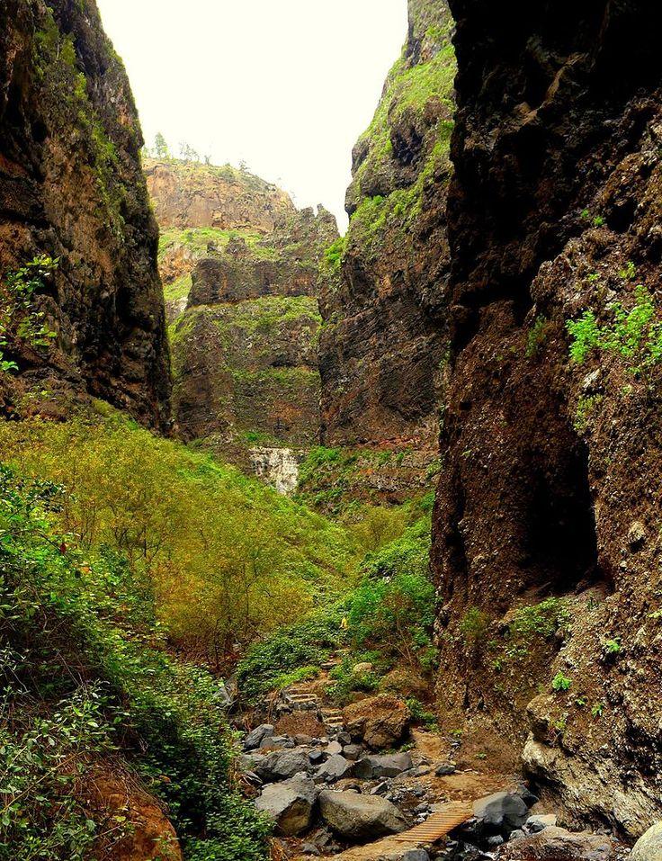 Barranco del Infierno (Hell's Ravine). Adeje, Tenerife, Canary Islands