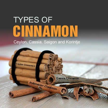 Types Of Cinnamon   Ceylon   Cassia   Saigon   Korintje