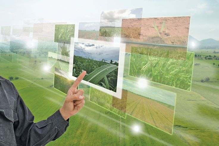 Superclusters: Creating a silicon valley for agriculture and food - Alberta Farmer Express https://www.albertafarmexpress.ca/2018/01/15/superclusters-creating-a-silicon-valley-for-agriculture-and-food/
