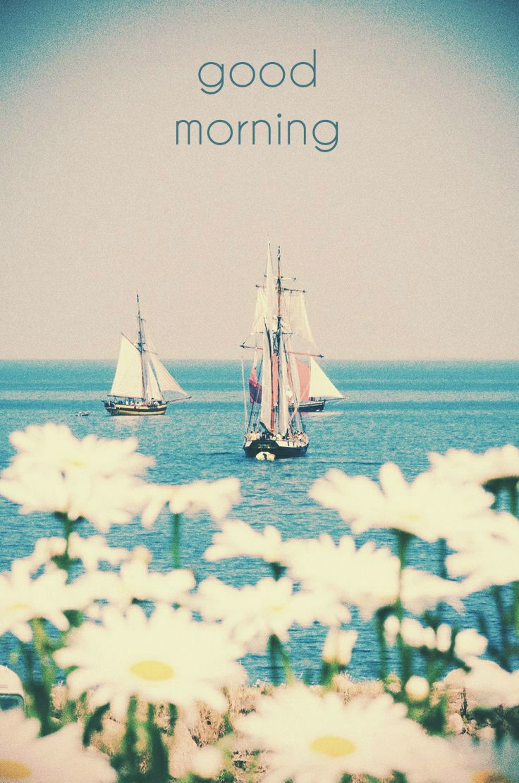 good morning card boats and white flowers