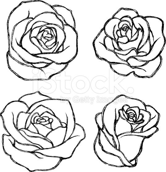 Sketch Rose Flower Set royalty-free stock vector art