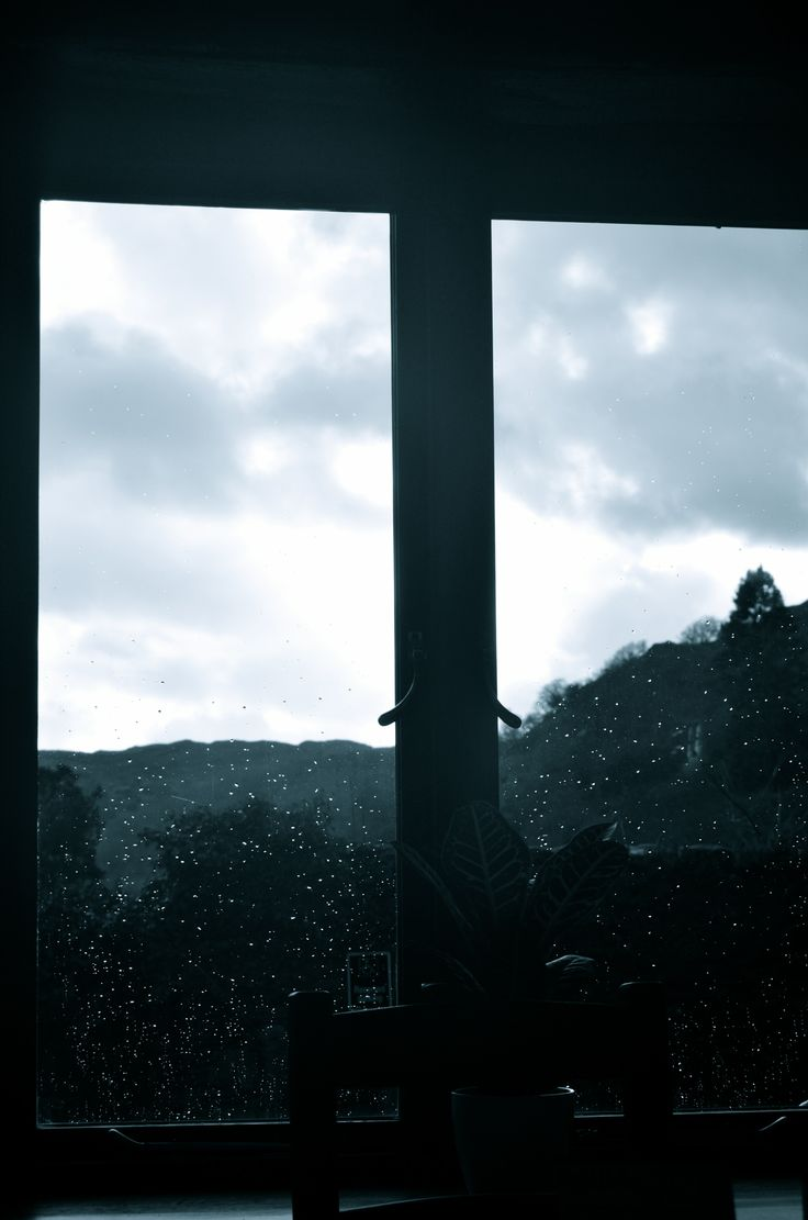View out of the window at Rydal Tea Room