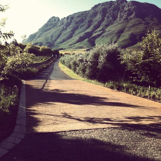 Cape Town winelands