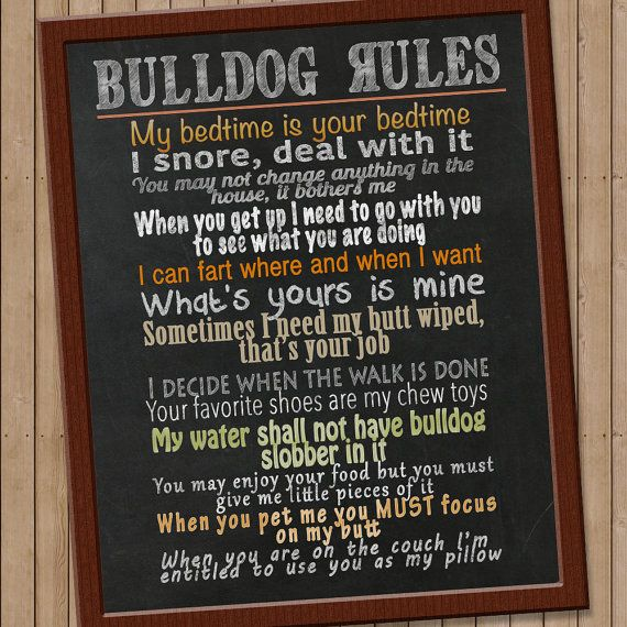 Inspirational Quotes On Life: 25+ Best Ideas About Dog Rules On Pinterest