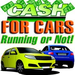 Car Wreckers Hamilton provides free car and 4×4 removal with top cash paid on the spot. Wanted cars will do same day car removal or car purchase. Car Wreckers Hamilton is located in Waikato region. Wanting top paid dollar for your old car give wanted dead or alive cars a call now on0800576911