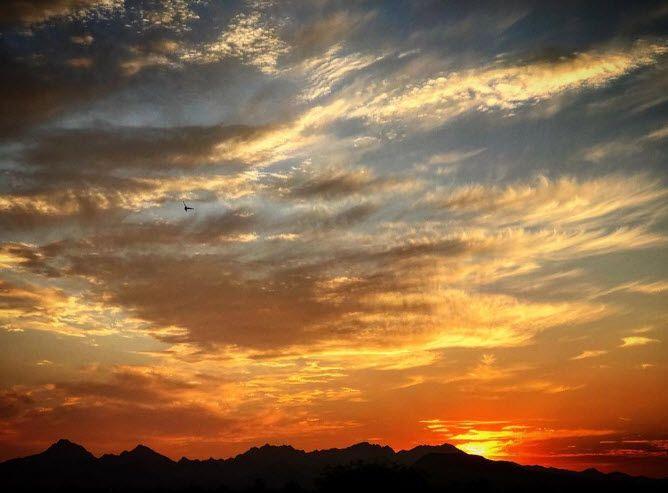 34 best tucson winter training images on pinterest tucson free yourself in tucson arizona photo via ig user smlopez05 solutioingenieria Gallery