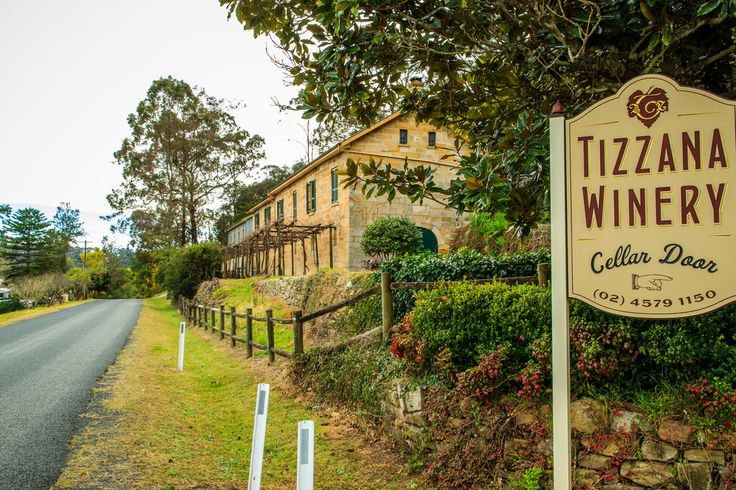 Tizzana Winery, Sackville Reach, Hawkesbury River 1887. An early experiment in grape growing.
