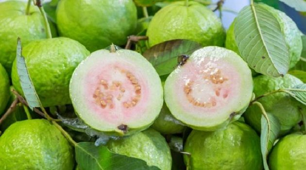How to Use Guava Leaves to Beat Wrinkles, Acne, Dark Spots and Skin Allergies