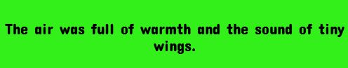 The air was full of warmth and the sound of tiny wings.