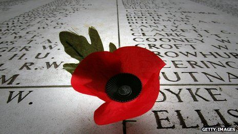 A poppy on a grave to mark Armistice Day, Remembrance Day and Veteran's Day on November 11, 2014.