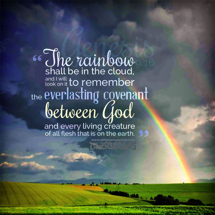 """The rainbow shall be in the cloud, and I shall look on it to remember  the everlasting covenant between God and every living creature of all flesh that is on the earth."" Genesis 9:16 <3"