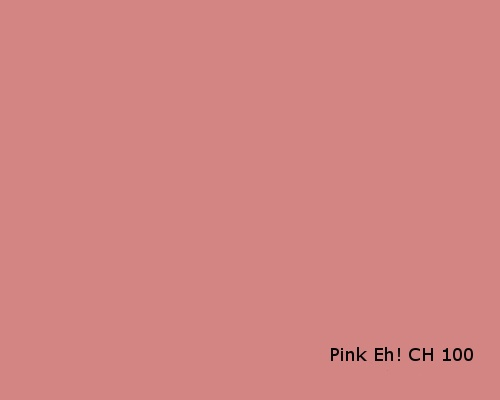 Pink Eh? CH100 ~General Paint