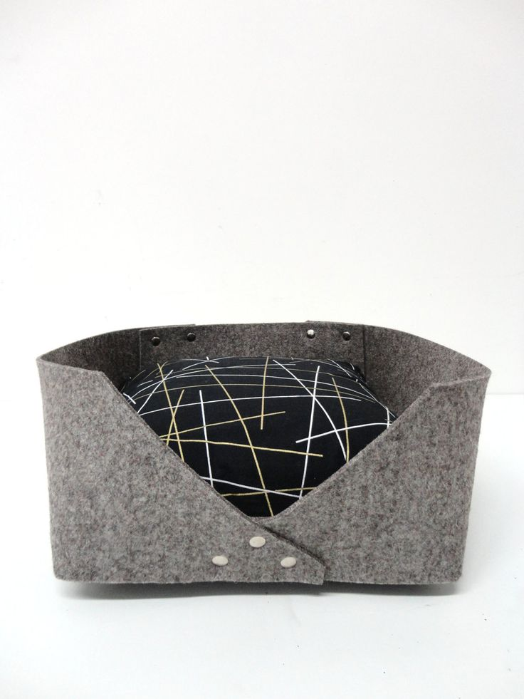 les 20 meilleures id es de la cat gorie chiens de petite. Black Bedroom Furniture Sets. Home Design Ideas