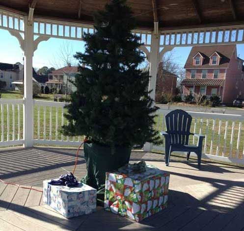 Grinch Steals Christmas Tree in Accomack County - WBOC-TV 16, Delmarva's News Leader, FOX-21