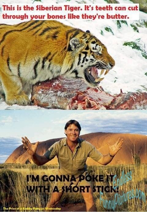 Get a laugh: steve irwin