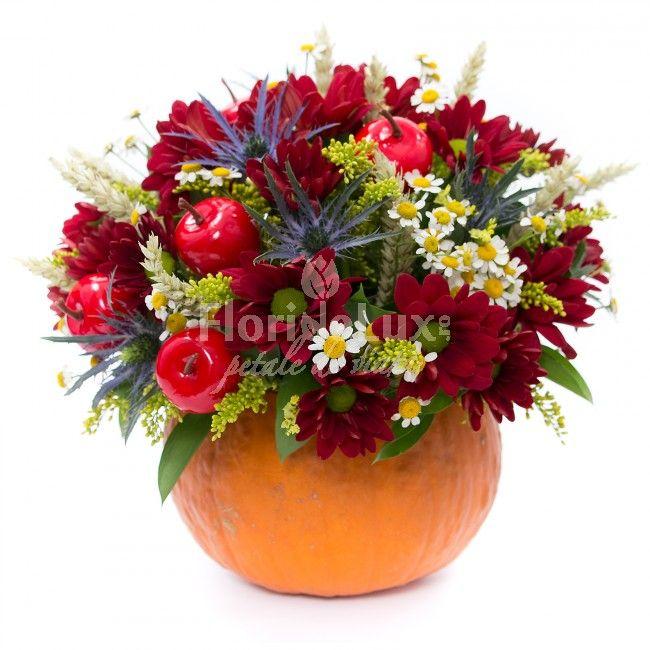 Sezonul dovlecilor pliiini cu flori este aici!  Comanda online cele mai frumoase aranjamente florale de toamna, dovleci cu flori !
