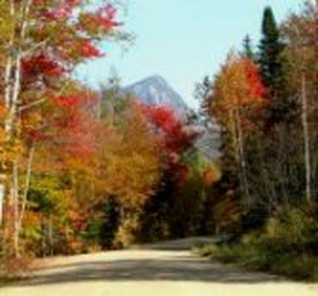 Fun Fall Day Trips from Portland, Maine: A fall scene in Maine.